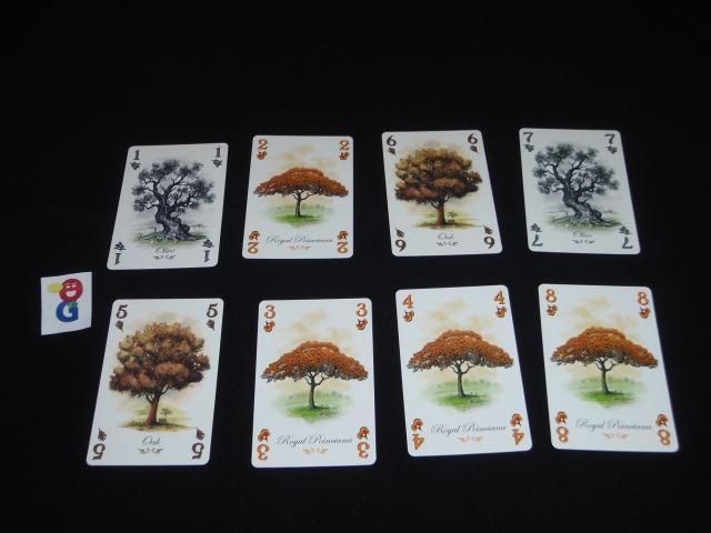 My example arboretum