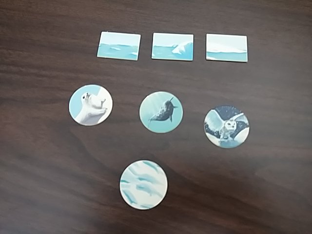 Different Arctic animal and landscape tiles