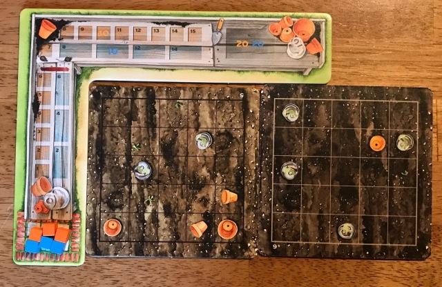 player-board