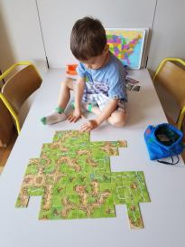 Carcassonne Learning